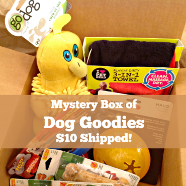 https://city2.wpmix.net/wp-content/uploads/2017/09/deal-on-dog-mystery-box-G-370x370.png